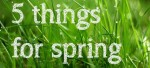 5 spring tips from our gurus