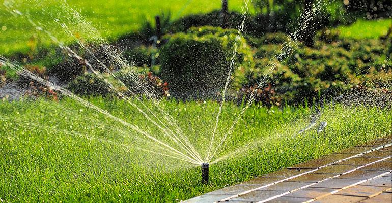 Sprinkler watering garden - GlobalNet Horticulture courses